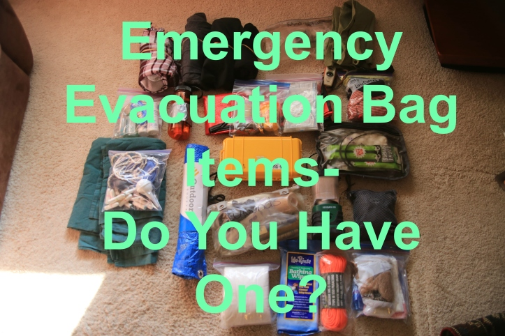 Emergency Evacuation Bag list of items and photos by www.carriereedtravels.com