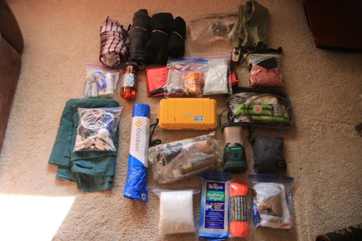 Evacuation Bag Supplies at www.carriereedtravels.com