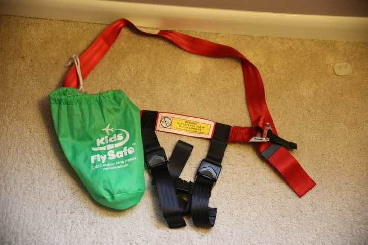 Flying with Little Kids: Must have accessories and tips at www.carriereedtravels.com