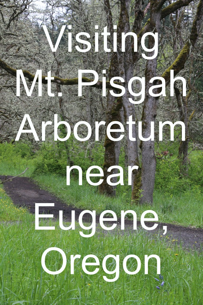 Visiting Mt. Pisgah Arboretum near Eugene, Oregon | www.carriereedtravels.com