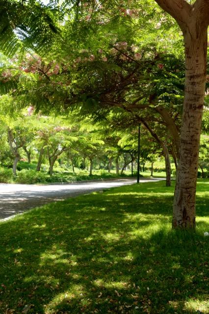 Blog_Al Azhar Park - 15