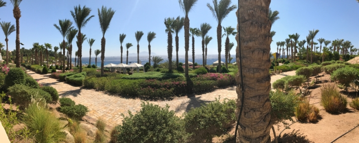 Sharm_Blog - 14