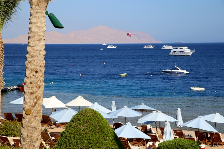 Sharm_Blog - 2
