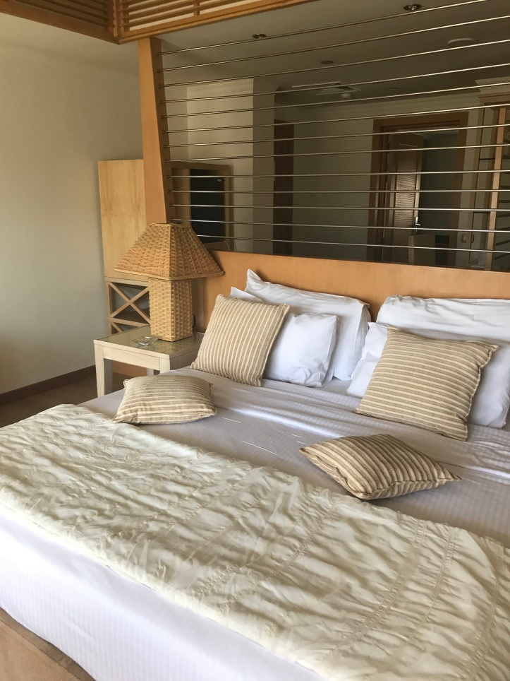 Hotel Review of Movenpick, Elephantine Island, Aswan, Egypt   www.carriereedtravels.com