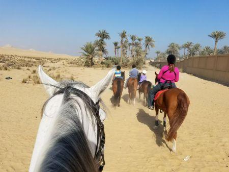 Horseback Riding Near Abusir Pyramids with Kids |www.carriereedtravels.com