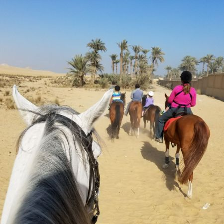 Horseback Riding Near Abusir Pyramids with Kids |www.carriereedtravels.com