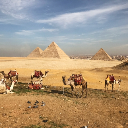 Visiting the Pyramids of Greater Cairo with Kids: A Guide | www.carriereedtravels.com