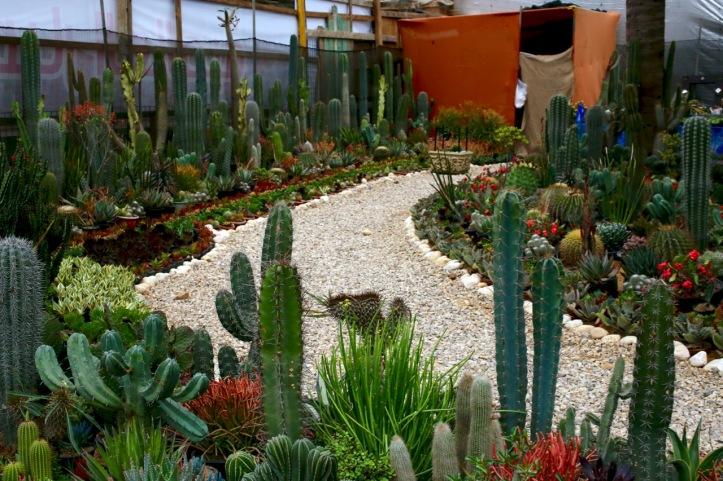 Blog_Orman Garden Show - 13