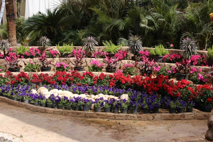 Blog_Orman Garden Show - 19