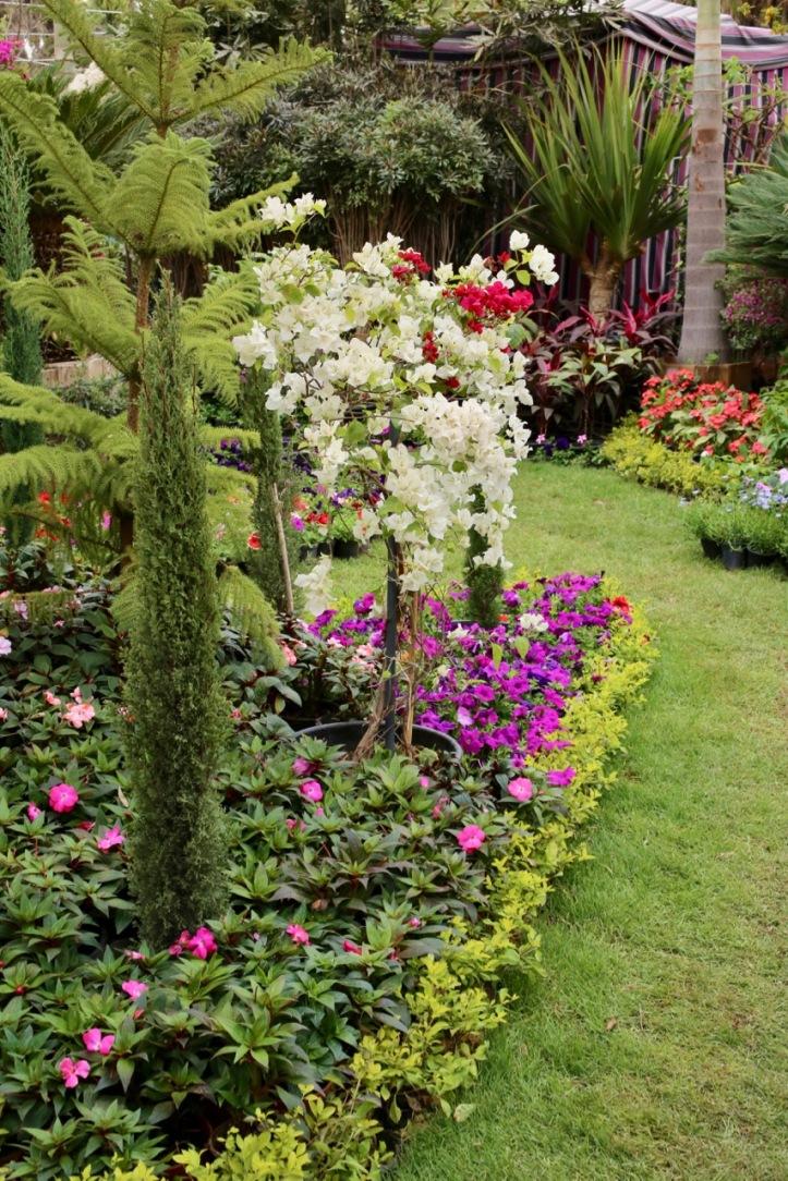 Blog_Orman Garden Show - 3