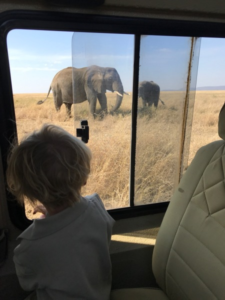 """Don't Take Your Kids on Safari!""-My Response to Naysayers 