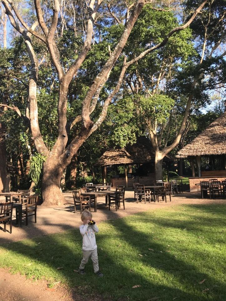 Blog Arusha - 5