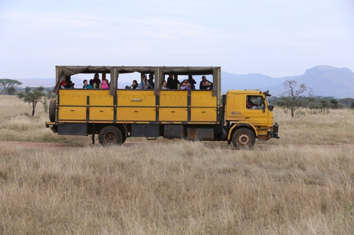 Kids on Safari: 8 Nights in Tanzania, An Overview