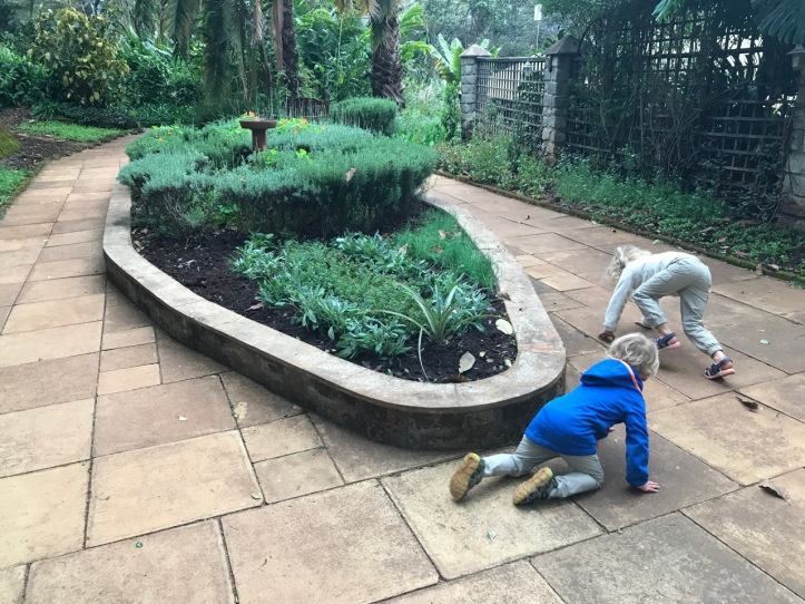 Kids on Safari: Gibb's Farm Hotel Review at Ngorongoro Crater, Tanzania