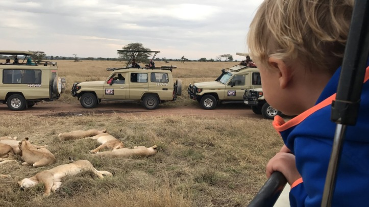 Kids on Safari: Serengeti National Park, Tanzania | www.carriereedtravels.com