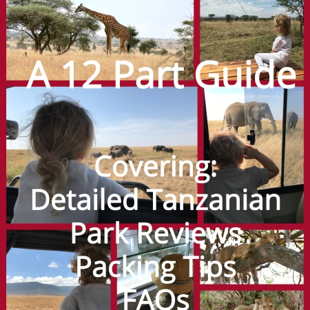 Kids on Safari: A 12 Part How To Guide to Having the Best Safari, including a detailed review of our Tanzanian safari (Tarangire, Lake Manyara, Ngorongoro Crater, and the Serengeti), and general tips for safari packing, planning, and traveling with little kids no matter where you safari.   www.carrietravels.com