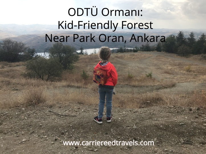 ODTÜ Ormanı: Kid-Friendly Forest Near Park Oran, Ankara | www.carriereedtravels.com