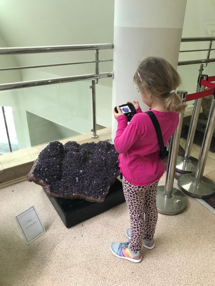Blog Natural History Museum - 15