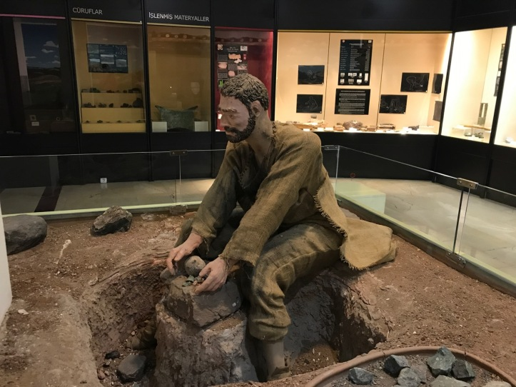 Blog Natural History Museum - 18
