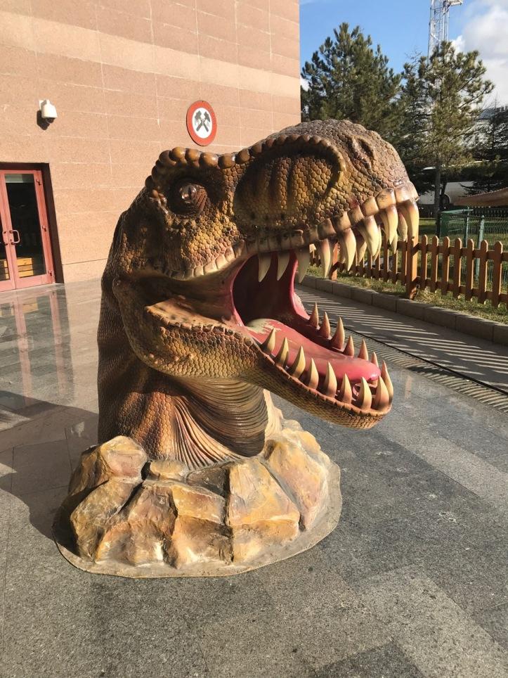 Blog Natural History Museum - 4