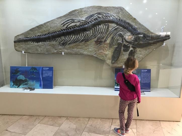 Blog Natural History Museum - 9